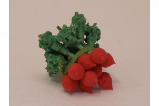 10X viele Arten von Gemüse Miniatur Puppenhaus handgemachte AB